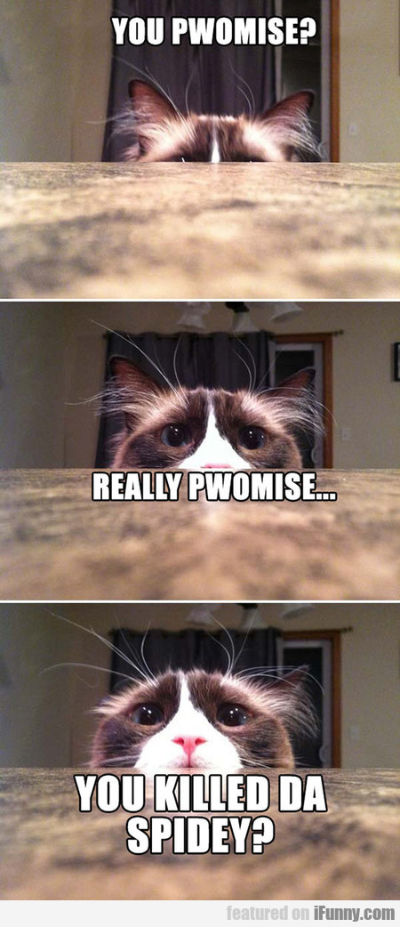 You Pwomise?