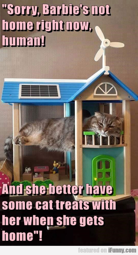 Sorry, Barbie's Not Home Right Now, Human!