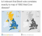 Is It Relevant That The Brexit Vote Coincides With
