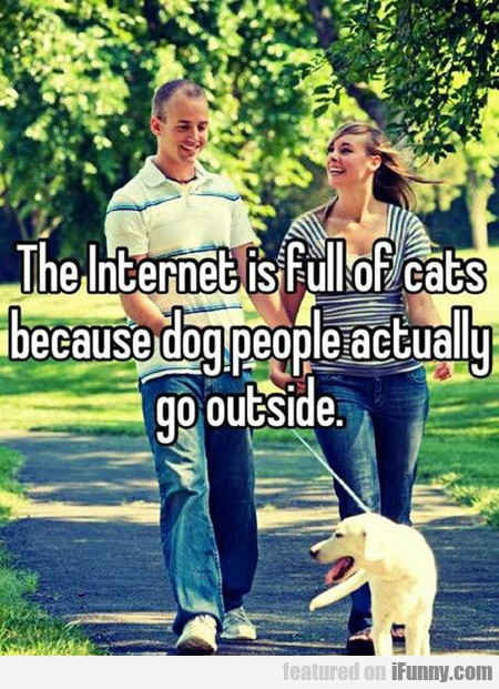 the internet is full of cats