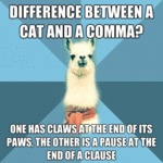 The Difference Between A Cat And A Comma...