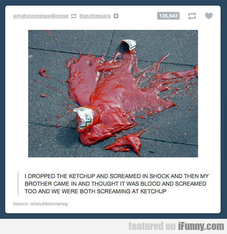 I Dropped The Ketchup And Screamed In Shock