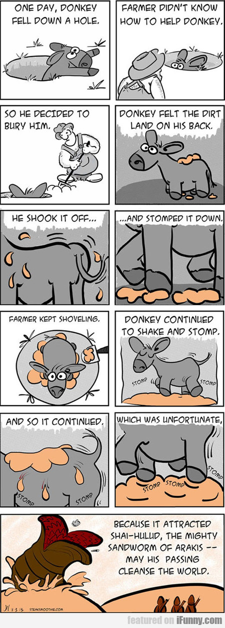 one day, donkey fell down a hole