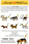 If You See A Dog With A Yellow Ribbon