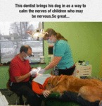 This Dentist Brings His Dog In To Calm The Nerves
