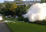 Someone Loaded A Community Fountain With...
