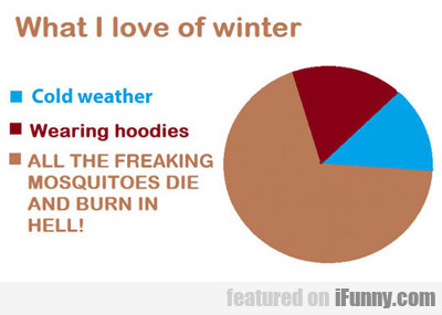 What I Love About Winter Time...