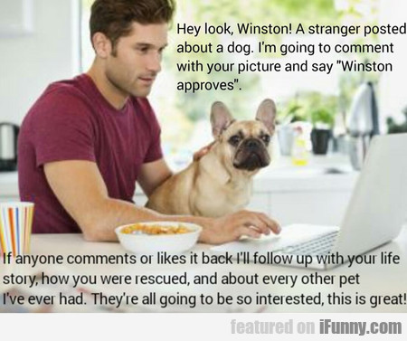 Hey Look! A Stranger Posted About A Dog