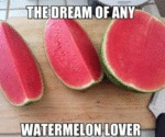 The Dream Of Any Watermelon Lover...