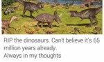 Rip The Dinosaurs...