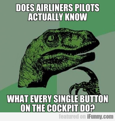 Do Airliner Pilots Actually Know...