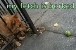 My Fetch Is Borked