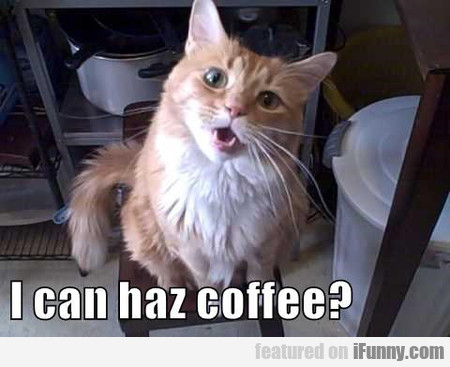I Can Has Coffee?