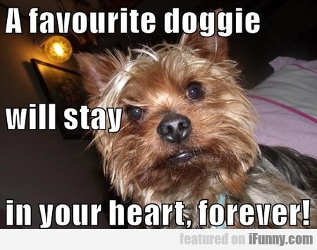 A Favourite Doggie Will Stay In Your Heart Forever