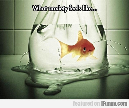 What Having Anxiety Feels Like...