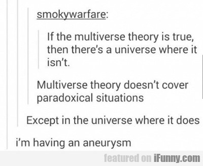 If The Multiverse...