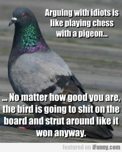 arguing with idiots is like playing chess...