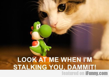 Look At Me When I'm Stalking You
