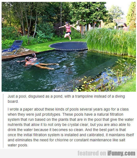 Just A Pool, Disguised As A Pond, With A Trampolin