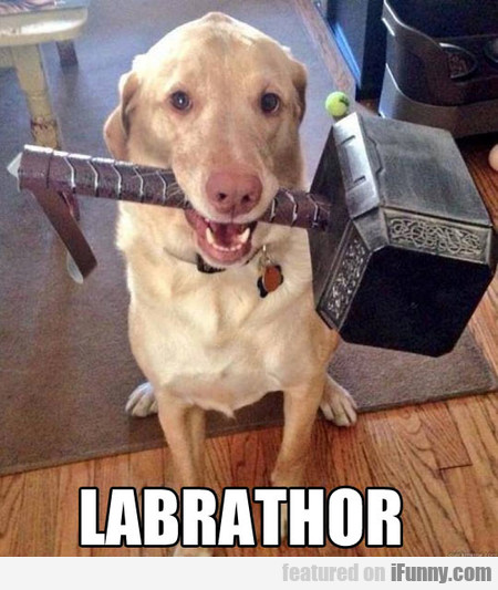 Labrathor, The Dog Of Thunder