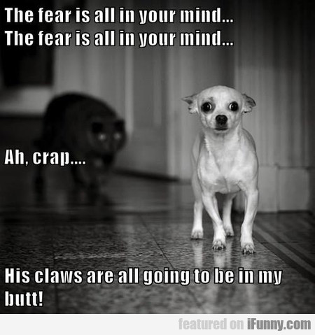 The Fear Is All In Your Mind...
