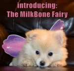 Introducing The Milkbone Fairy