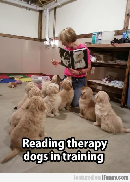 Reading Therapy Dogs In Training