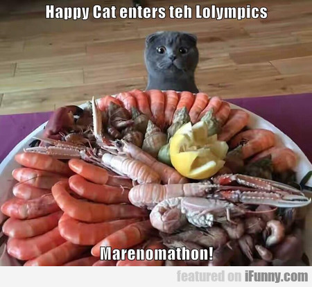 Happy Cat Enters The Lolympics