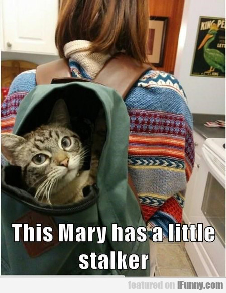 This Mary Has A Little Stalker