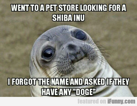Went To Pet Store Looking For Shiba Inu...