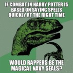 If Combat In Harry Potter...