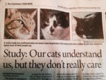 Out Cats Understand Us But...