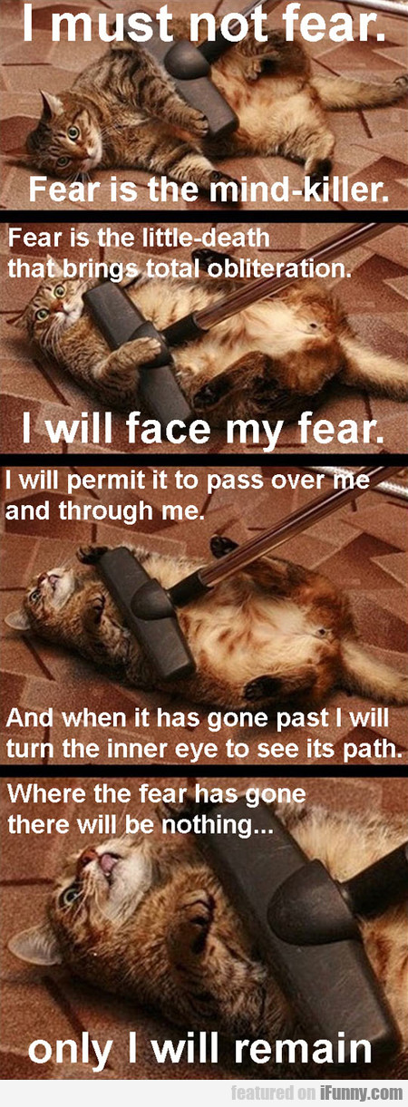 I Must Not Fear. I Will Face My Fear