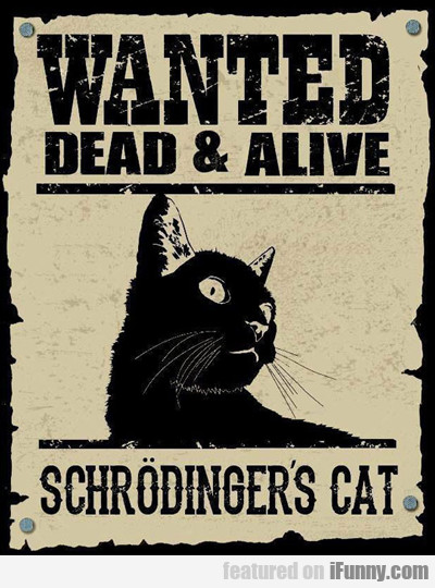 Wanted Dead Or Alive...