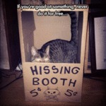 Hissing Booth...