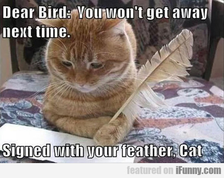 Dear Bird, You Won't Get Away Next Time