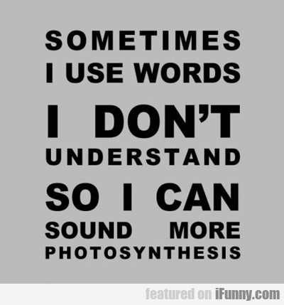 sometimes i use words i don't understand...