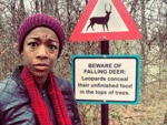 Beware For Falling Leopards...