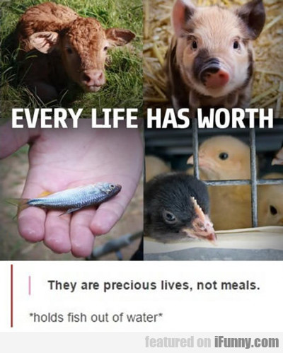 Every Life Has Its Worth...