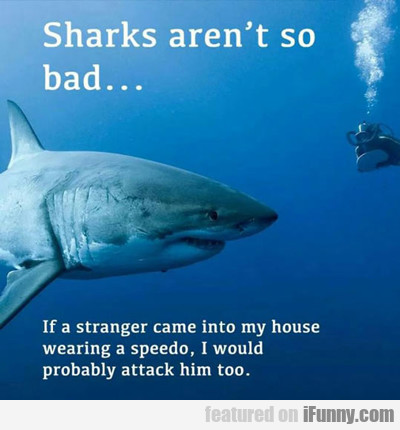 Sharks Aren't Really So Bad...