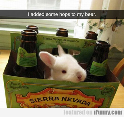 I Added Hops To My Beer...