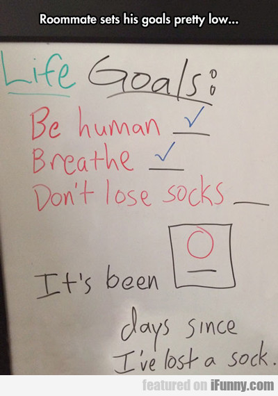 Roommate Set His Goals Pretty Low...