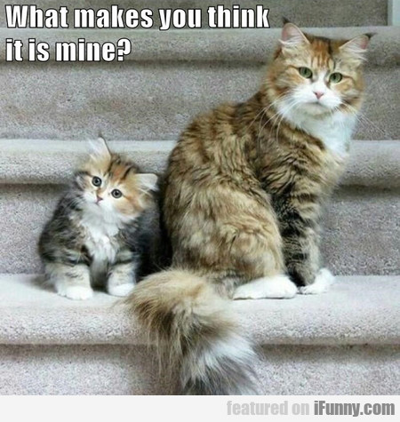 what makes you think it is mine?