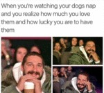 When You're Watching Your Dogs...