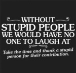 Without Stupid People...