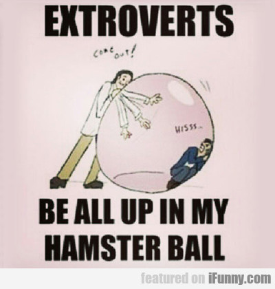 Extroverts Be All Up In My Hamsterball...