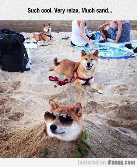 Such Cool. Very Relax. Much Sand...