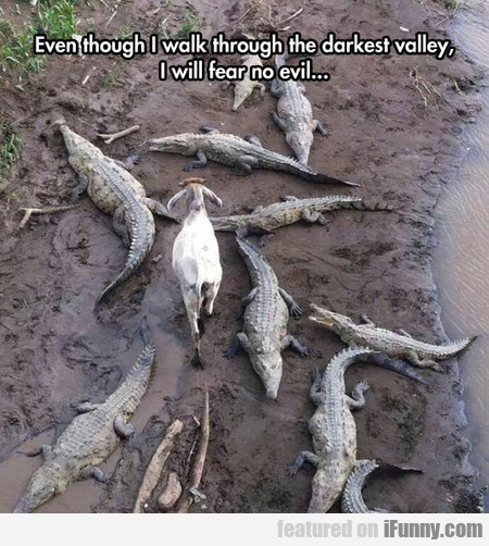 Even Though I Walk Through The Darkest Valley