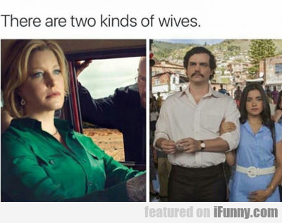 There Are Two Kinds Of Wives..