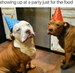 Showing Up At A Party Just For The Food